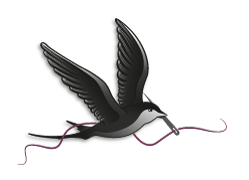 Black Bird Créations
